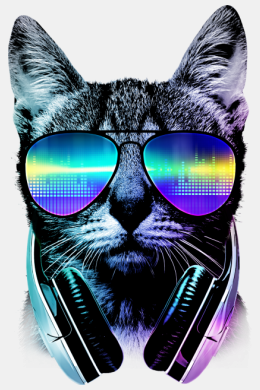 Night cat dj,