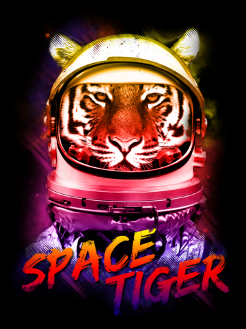 2015 SPACE TIGER