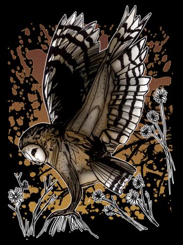 Barn Owl Stance