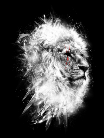 Battle scars - Lion art