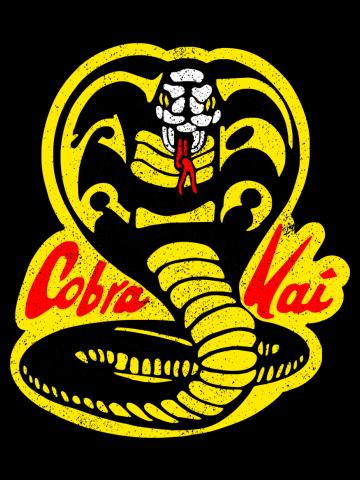 Cobra Kai ✅ Strike First - Strike Hard