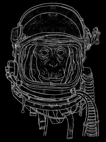 Cosmic Ape
