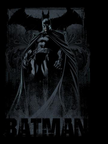Dark Knight of Gotham City