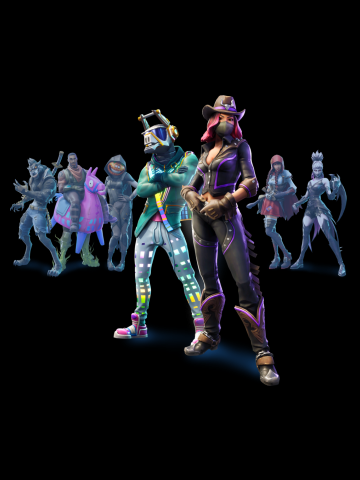 Epic Team Fortnite