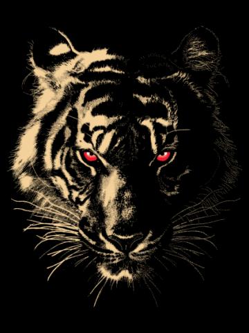 Evil eyes tiger
