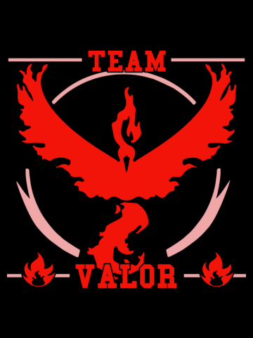 GO Team Valor