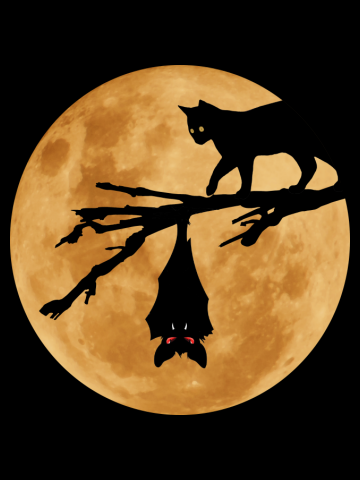 Halloween - Moon (The Cat and the Bat)