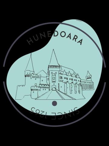 Hunedoara, Since
