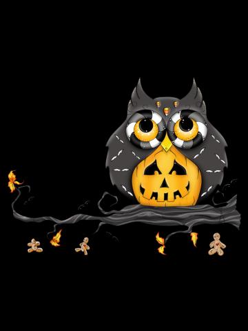 Jack-O-Lantern Halloween Owl