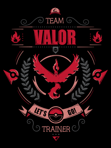Let's go! Team valor