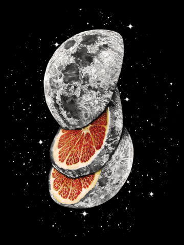Lunar Fruit