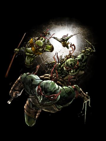 Mean Green Ninjas