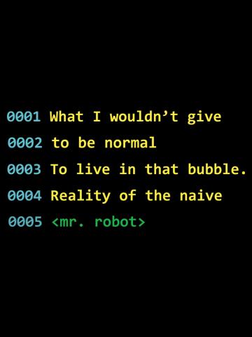 Mr. Robot Quote