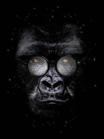 Nerd Gorillaz