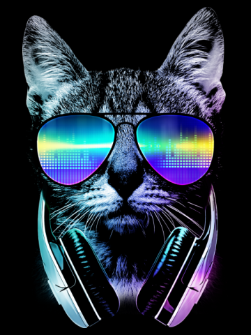 Night cat dj
