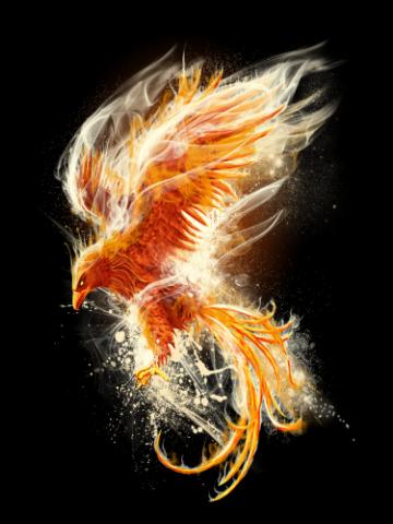 Pheonix The fire Bird