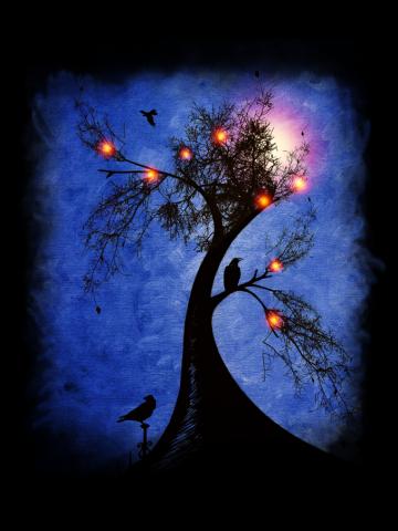 Raven Christmas II