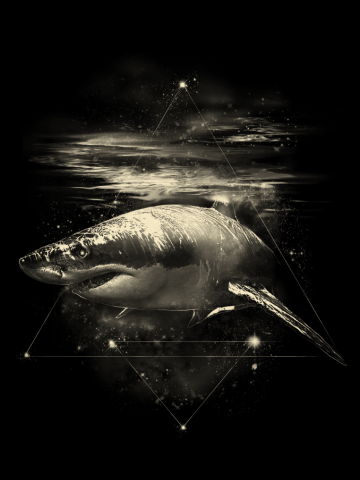 Shark in Space