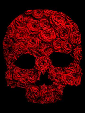 Skull [Roses]