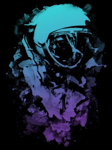 Space Dog V2