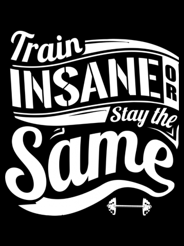 Train Insane Or Stay The Same