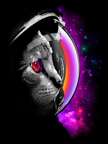 Vast universe cat