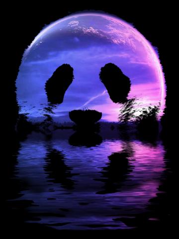 Panda moon
