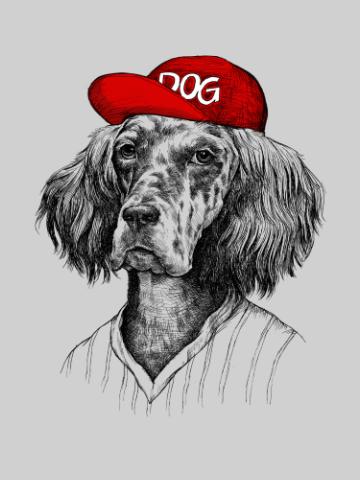 Dog Dude