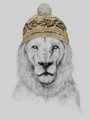 Hip lion