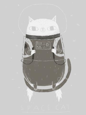 Russian astro cat