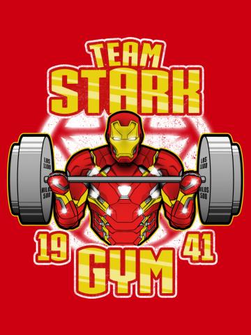 Team Stark Gym