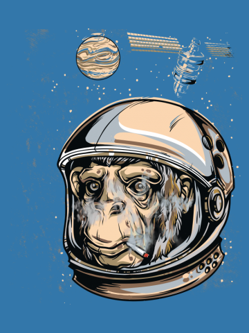 Monkey High in Space