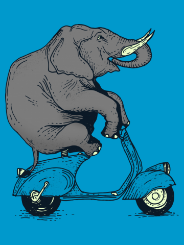 Elephant on classic motorbike