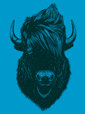 Mohawk Buffalo