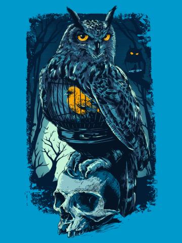 Owl&Skull