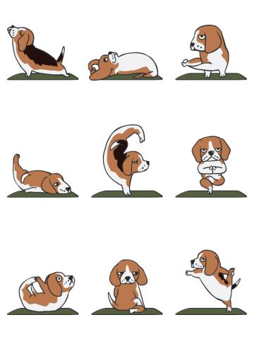 Beagle Yoga