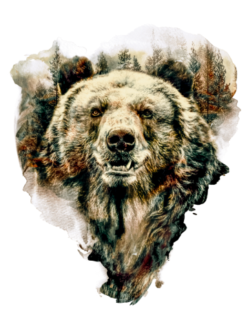 Bear ALT-0