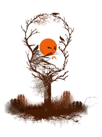 Birds song