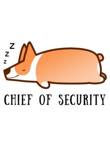 Chief of Security Corgi zzZZ