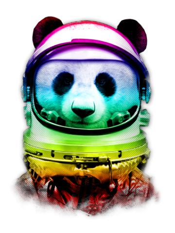 Colorfull Space panda