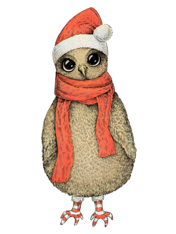 Cute Christmas Owl