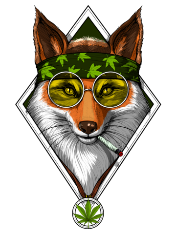 Fox Hippie Smoking Weed
