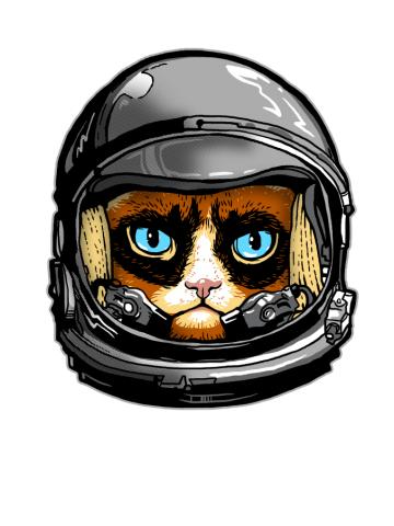Grumpy Astronaut, Not