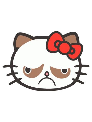 Hello Grumpy Kitty