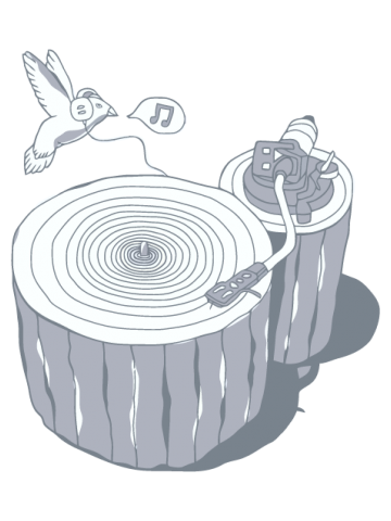 Muzica naturii