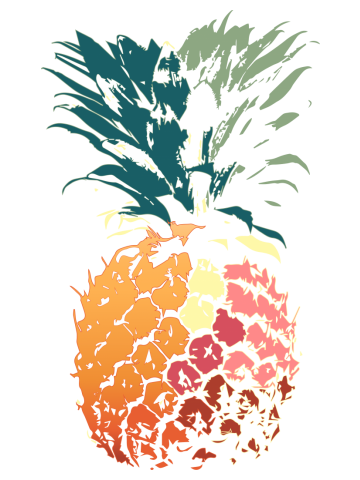 Nice drawn colored painted pineapple art