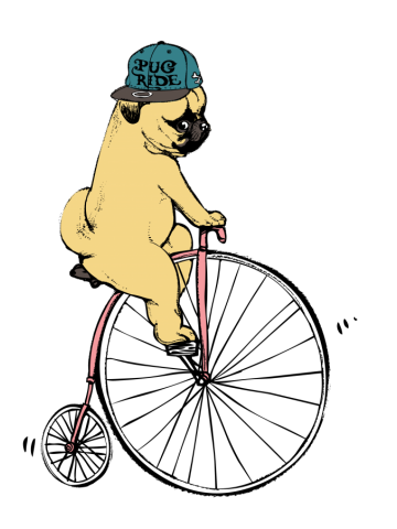 Pug Ride