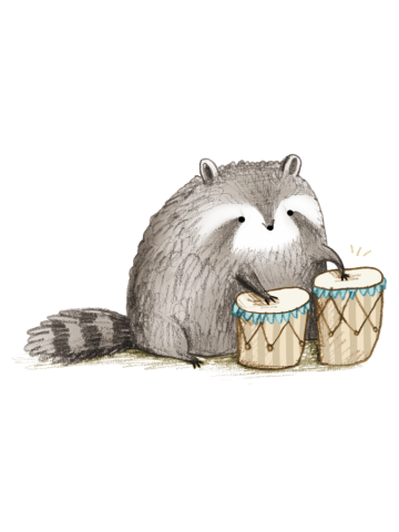 Raccoon on Bongos