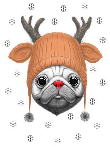 Rudolf pug