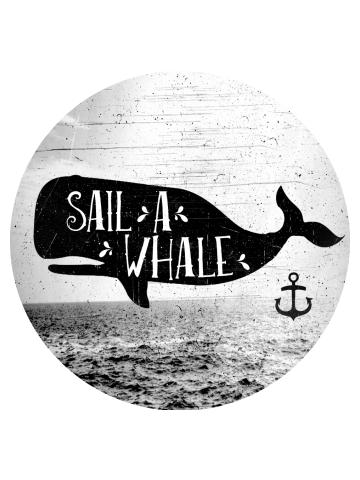 Sail a Whale